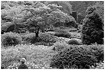 Tourist looking at flowers and trees in the Sunken Garden. Butchart Gardens, Victoria, British Columbia, Canada ( black and white)