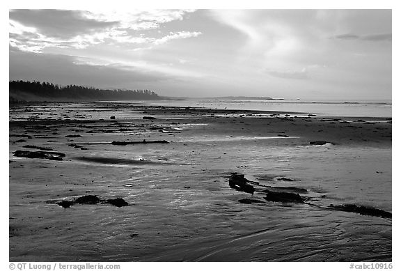 Long Beach, early morning. Pacific Rim National Park, Vancouver Island, British Columbia, Canada (black and white)