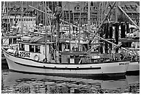 Fishing boat in harbour, Uclulet. Vancouver Island, British Columbia, Canada (black and white)