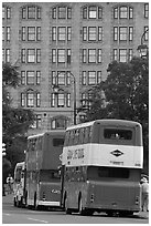Double-deck tour busses. Victoria, British Columbia, Canada (black and white)