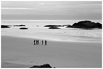 Long Beach. Pacific Rim National Park, Vancouver Island, British Columbia, Canada ( black and white)