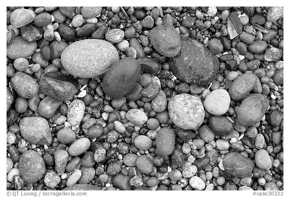 Pebbles, South Beach. Pacific Rim National Park, Vancouver Island, British Columbia, Canada