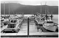 Fishing boats in harbour in Alberni Inlet, Port Alberni. Vancouver Island, British Columbia, Canada ( black and white)