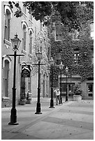 Alley with street lamps, Bastion Square. Victoria, British Columbia, Canada (black and white)