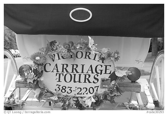 License plate of horse carriage car with flowers. Victoria, British Columbia, Canada (black and white)