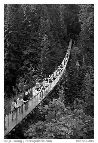 Capilano suspension bridge. Vancouver, British Columbia, Canada (black and white)