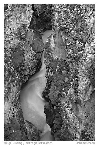 Limestone walls carved by Tokkum Creek, Marble Canyon. Kootenay National Park, Canadian Rockies, British Columbia, Canada (black and white)