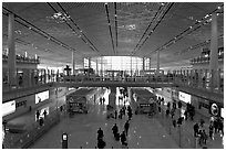 Terminal 3, Beijing Capital International Airport. Beijing, China ( black and white)
