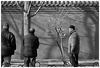 Bird market along red wall. Beijing, China ( black and white)