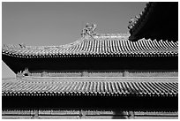 Roof detail, Forbidden City. Beijing, China ( black and white)