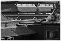 Rooftops details, Forbidden City. Beijing, China ( black and white)