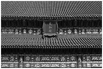 Roof detail and sign on Hall of Supreme Harmony, Forbidden City. Beijing, China ( black and white)