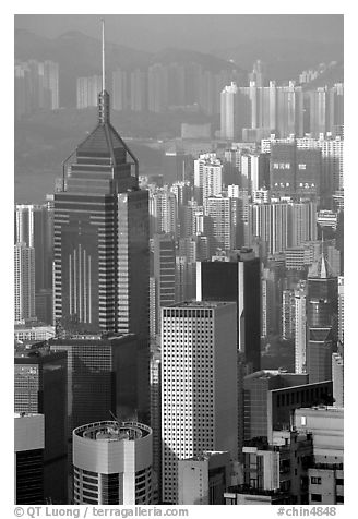 Tower buildings seen from Victoria Peak, late afternoon, Hong-Kong Island. Hong-Kong, China (black and white)