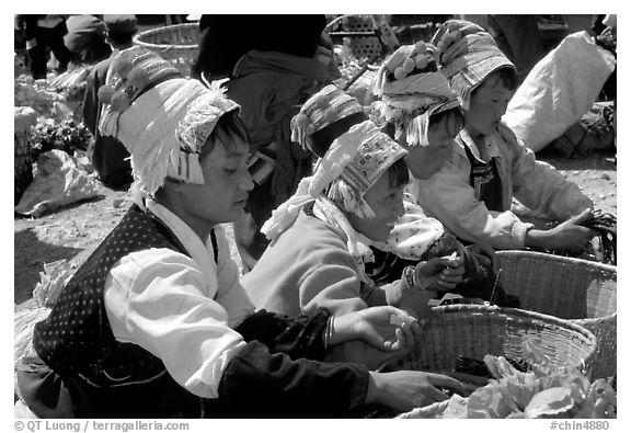 Bai women in tribal dress selling vegetables at the Monday market. Shaping, Yunnan, China (black and white)