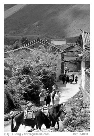 Village street leading to the market. Shaping, Yunnan, China (black and white)