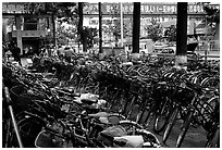 Bicycle parking lot. Kunming, Yunnan, China (black and white)