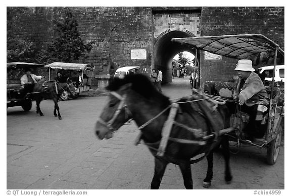 Horse carriage near the North Gate. Dali, Yunnan, China (black and white)