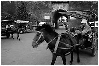 Horse carriage near the North Gate. Dali, Yunnan, China ( black and white)