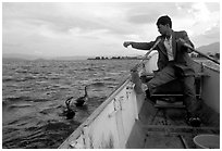 Cormorant fisherman sends out his birds. Dali, Yunnan, China (black and white)