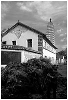 Rural activity in a street close to the Three Pagodas. Dali, Yunnan, China ( black and white)