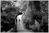 Entrance walkway to the Grand Buddha complex. Leshan, Sichuan, China (black and white)