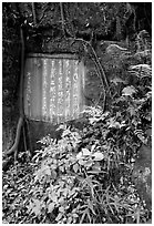 Chinese inscription in stone in the gardens of Dafo Si. Leshan, Sichuan, China ( black and white)