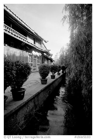 Wooden houses and vegetation near a canal. Lijiang, Yunnan, China (black and white)