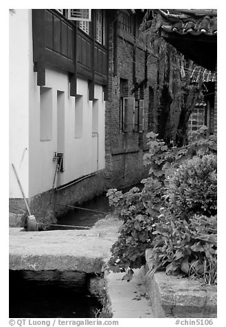 Flowers, canal, and houses. Lijiang, Yunnan, China (black and white)