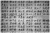Chinese caligraphy. Lijiang, Yunnan, China ( black and white)