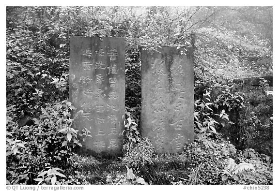 Stone tablets with Chinese scripture. Emei Shan, Sichuan, China (black and white)
