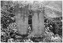 Stone tablets with Chinese scripture. Emei Shan, Sichuan, China ( black and white)