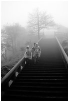 Pilgrims descend stairs beneah Xixiangchi temple in raingear. Emei Shan, Sichuan, China ( black and white)