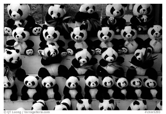 Stuffed pandas for sale. Chengdu, Sichuan, China (black and white)