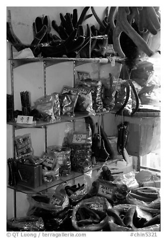 Weird animal products for sale inside the Qingping market. Guangzhou, Guangdong, China (black and white)