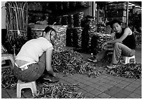 Sorting out dried sea horses. Guangzhou, Guangdong, China ( black and white)