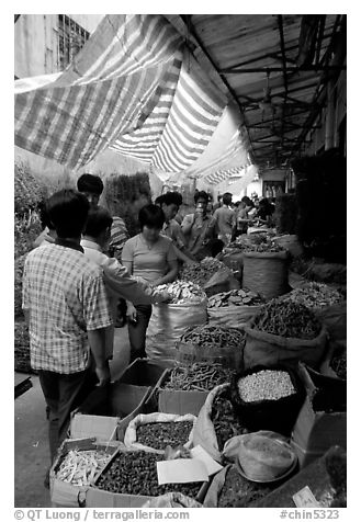 Dried food items for sale in the extended Qingping market. Guangzhou, Guangdong, China (black and white)