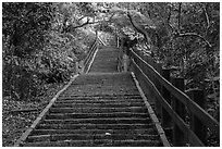 Stairs leading up Elephant Mountain. Taipei, Taiwan ( black and white)