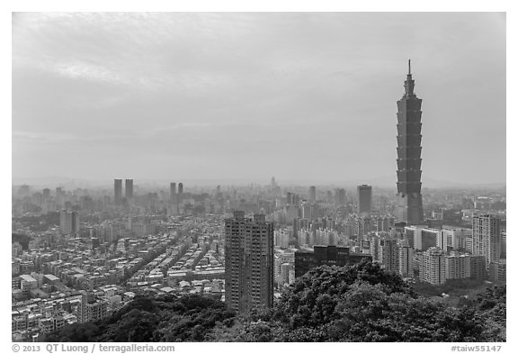 Black and white picture photo taipei skyline with taipei 101 tower taipei taiwan
