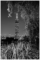 Taipei 101 seen through vegetation at night. Taipei, Taiwan ( black and white)