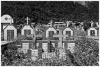 Tombs below lush cliff, Chongde. Taiwan (black and white)