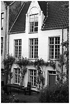 House by the canal. Bruges, Belgium ( black and white)
