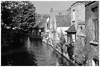 Canal lined with houses and trees. Bruges, Belgium (black and white)