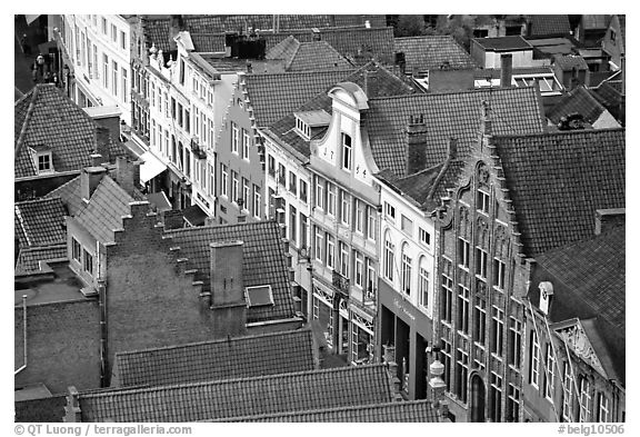 Red tile rooftops and facades. Bruges, Belgium (black and white)