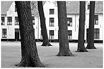 Courtyard of the Begijnhof. Bruges, Belgium ( black and white)