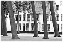 Grassy square in Beguinage (Begijnhof). Bruges, Belgium (black and white)