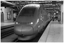 High speed train. Brussels, Belgium ( black and white)