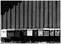 Row of mailboxes. Gotaland, Sweden ( black and white)