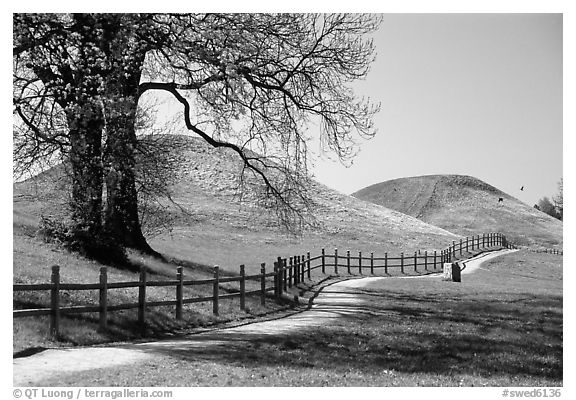 The three great grave mounds at Gamla Uppsala, said to be the howes of legendary pre-Vikings kings. Uppland, Sweden (black and white)