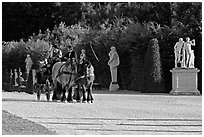Horse carriage in an alley of the Versailles palace gardens. France (black and white)