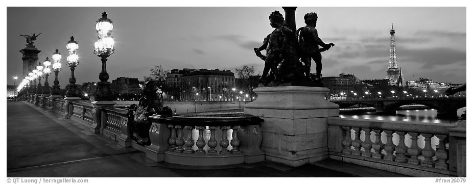 Panoramic Black And White Picture Photo Alexander III Bridge Eiffel Tower At Dusk Paris France